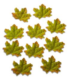 Listki ozdobne materiałowe kolor jesieni 10sztuk, v2